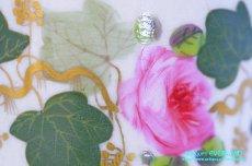 画像9: ダービー カップ&ソーサー ローズ 薔薇 蔦 (9)