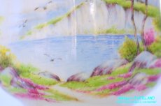 画像9: パラゴン カップ&ソーサー Cliffs of Dover ドーバーの崖 (9)