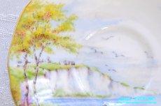 画像15: パラゴン カップ&ソーサー Cliffs of Dover ドーバーの崖 (15)