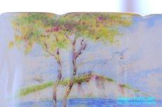 画像12: パラゴン カップ&ソーサー Cliffs of Dover ドーバーの崖 (12)