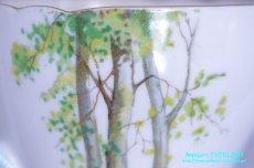 画像15: シェリー カップ&ソーサー Woodland ウッドランド 森林 New Cambridge (15)