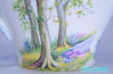 画像14: シェリー カップ&ソーサー Woodland ウッドランド 森林 New Cambridge (14)