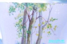 画像12: シェリー カップ&ソーサー Woodland ウッドランド 森林 Richmond (12)