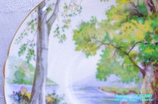 画像18: シェリー カップ&ソーサー Woodland ウッドランド 森林 Richmond (18)